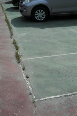 160306_tennis_court.jpg