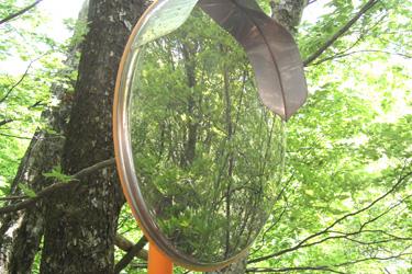 160327_mirror.jpg