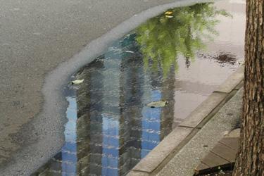 160509_puddle.jpg