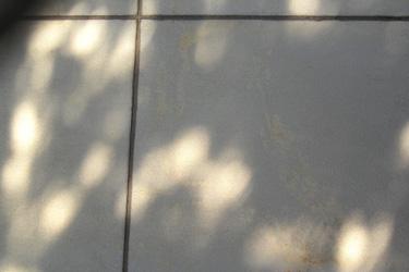 160611_wall_art.jpg