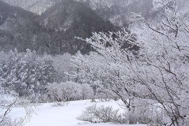 170106_snow_land.jpg