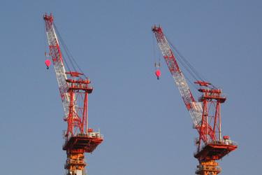 170122_cranes.jpg