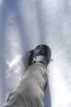 170208_my_step.jpg