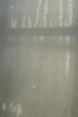 170216_window.jpg