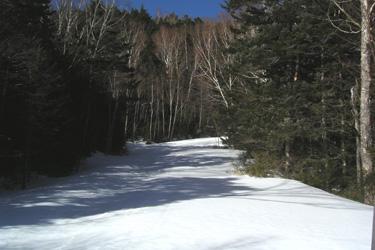 170305_snow_road.jpg