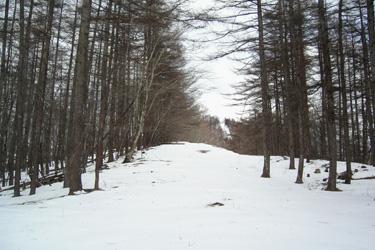 170312_snow_ridge.jpg
