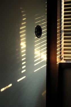 170325_sunlight.jpg