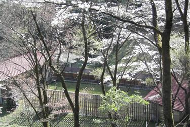 170417_kyuudou.jpg