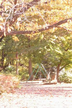 171123_swing.jpg