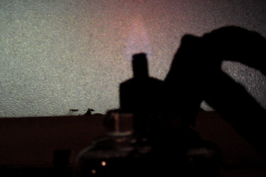 2010.01.10_lamp.jpg
