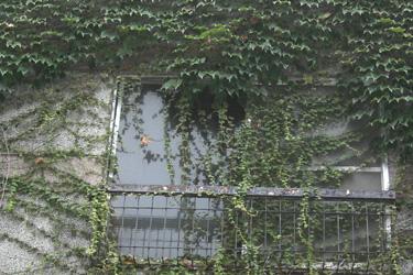 2013.07.30_window.jpg