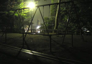 midnight park.jpg