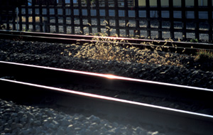 silver grass and railroad.JPG